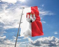 Salzburg Fahne mit Wappen in vielen Größen und Befestigungen (Premiumqualität)